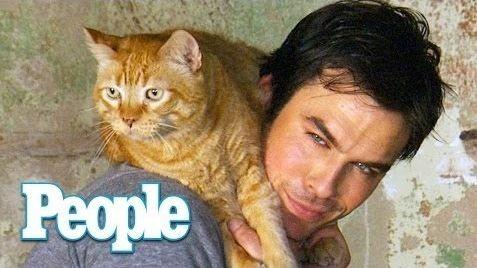 Йен Сомерхолдер сфотографировался со своим котом