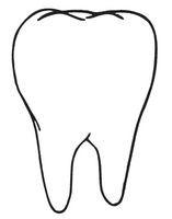 Ученые научились добывать кровь и зубы