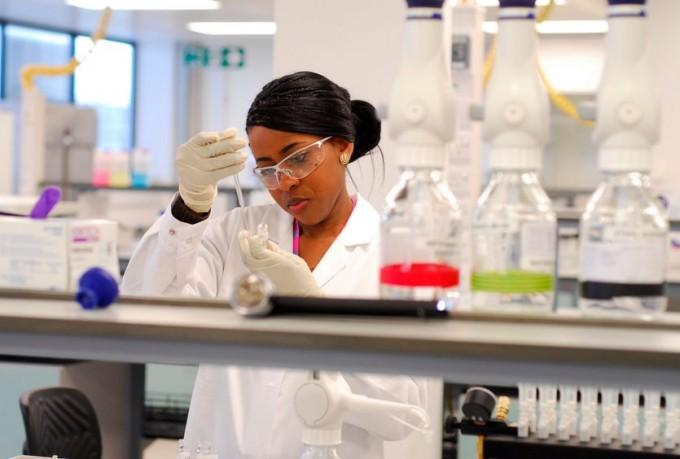 Ученым подвластно превращение клеток