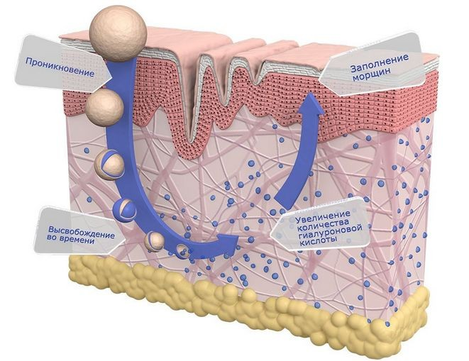 Устраняем дефицит внимания: увлажнение кожи тела