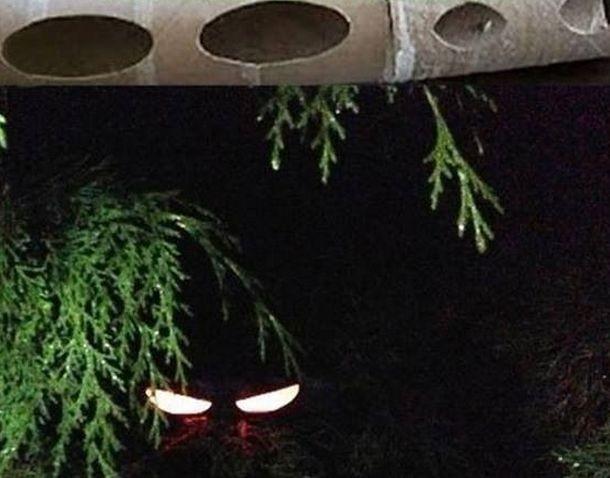 Как украсить свой дом к Хэллоуину