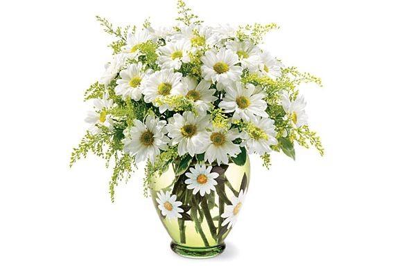 Гадание по цветам: любимые цветы расскажут о характере