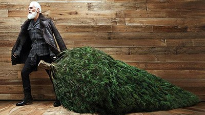 Знаменитости готовятся к Рождеству: ТОП самых-самых