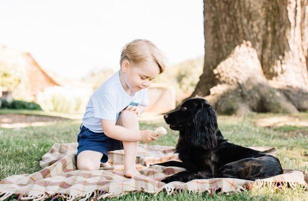 Принц Уильям и Кейт Миддлтон показали новые фотографии сына
