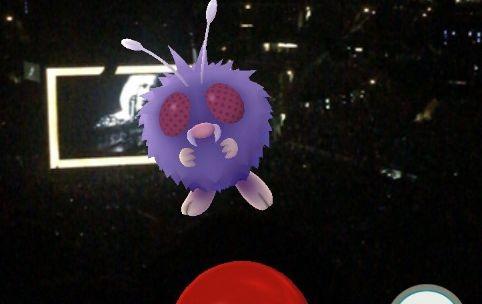 Рианна попросила не ловить покемонов на её концертах