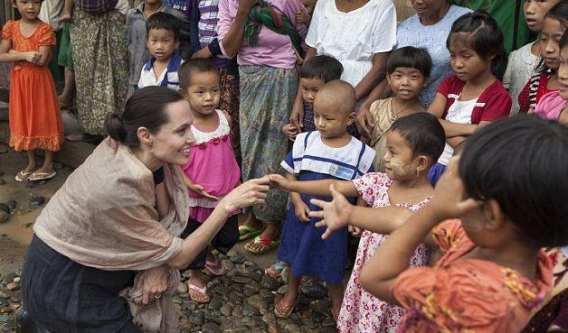 Анджелина Джоли будет преподавать в университете