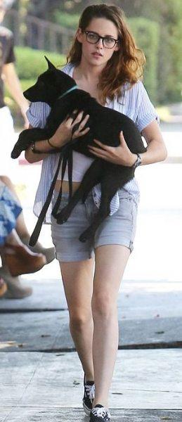 У Кристен Стюарт новая собака