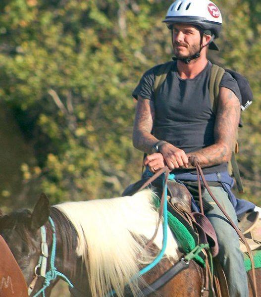 Семья Бекхэмов покаталась на лошадях