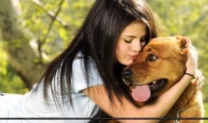 Джастин Бибер и Селена Гомес хотят взять бездомного щенка