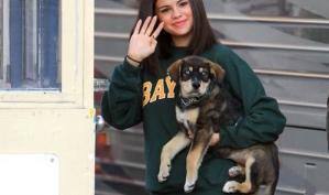 Селена Гомес забрала щенка из приюта