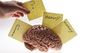Как правильно тренировать память