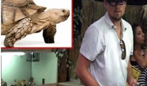 Леонардо Ди Каприо купил огромную черепаху