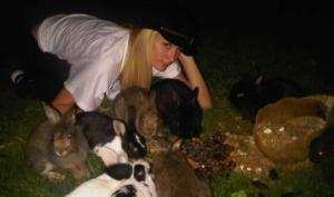 Пэрис Хилтон приобрела 20 кроликов