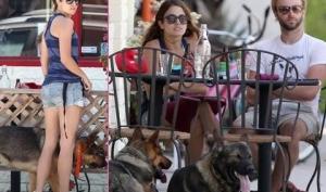 Никки Рид отметила день рождения с собаками
