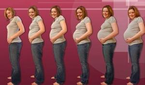 Календарь беременности упрощает жизнь будущей маме