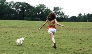 Порода собаки отражает характер её хозяина