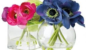 Виагра для букетов и цветы для еды