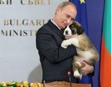 Объявлен конкурс на лучшую кличку для новой собаки Владимира Путина