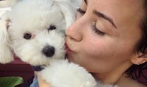 Деми Ловато оплакивает собаку