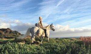 Лошадь - рождественский подарок для Леди Гага