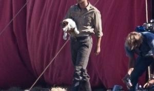 Одинокий Роберт Паттинсон взял из приюта собаку