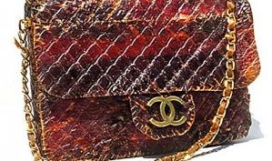 Леди Гага вдохновила дизайнера на сумочку и кошелёк из мяса