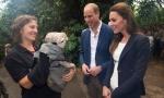 Визит принца Уильяма и Кейт Миддлтон в графство Корнуолл